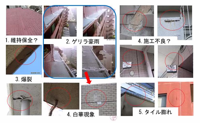 f:id:jiajiawarabi:20210609142037j:plain