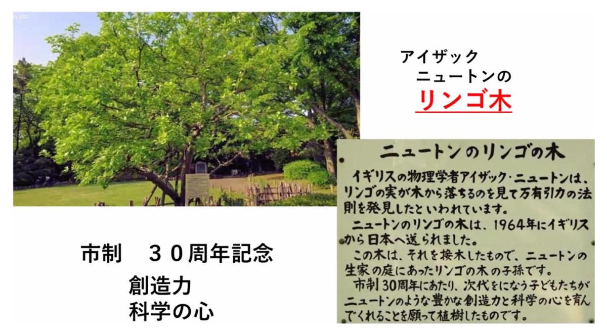 f:id:jiajiawarabi:20210704214418j:plain