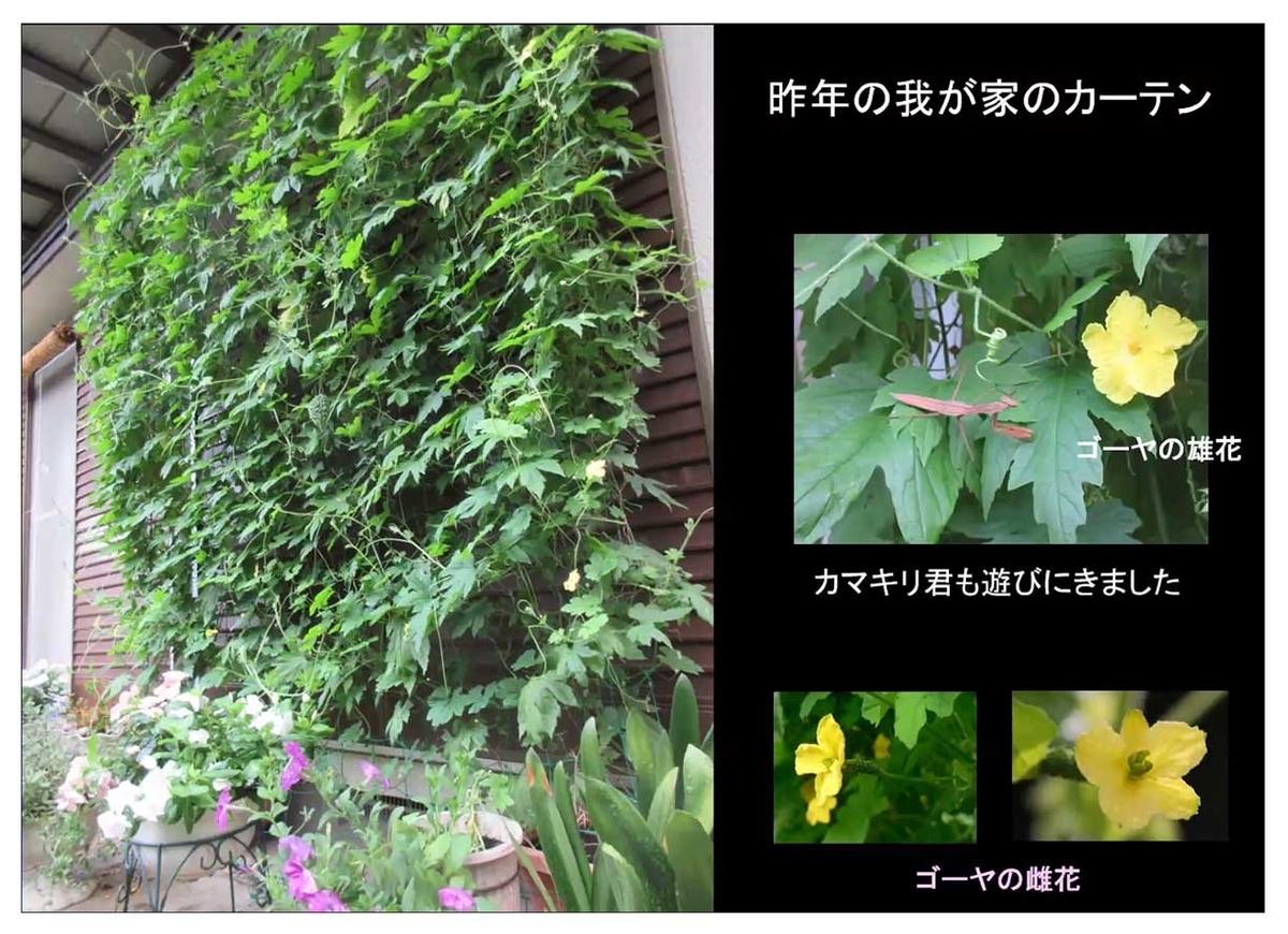 f:id:jiajiawarabi:20211017112134j:plain