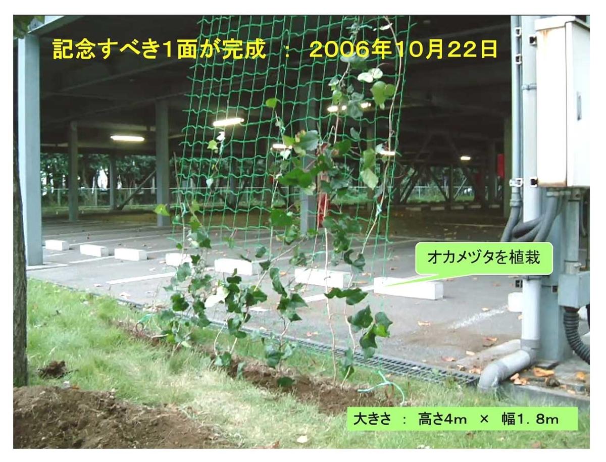 f:id:jiajiawarabi:20211017112304j:plain