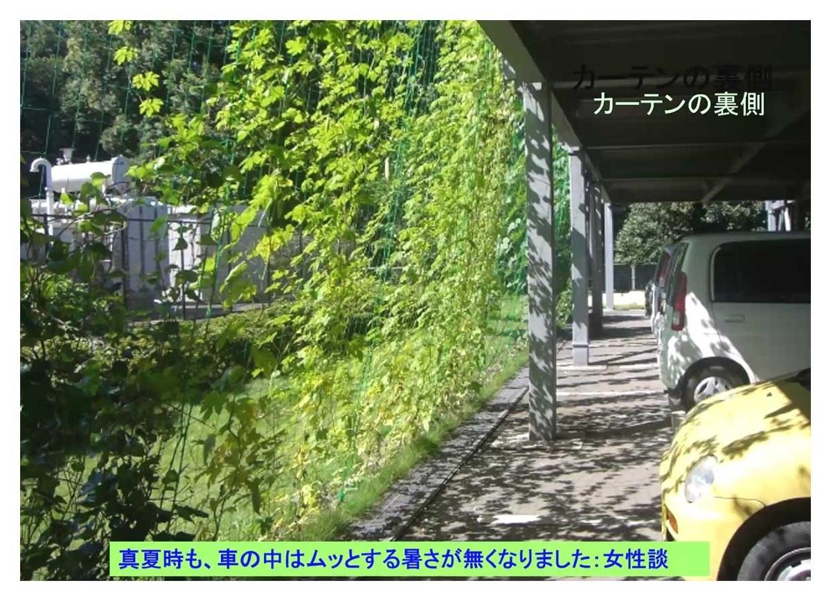 f:id:jiajiawarabi:20211017112509j:plain