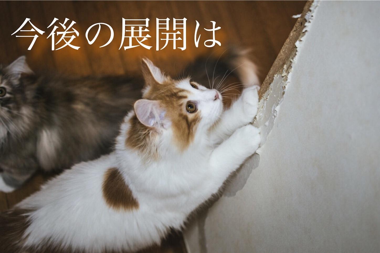 f:id:jibuchang:20180308110741j:image