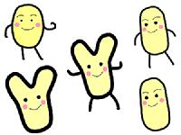 ビフィズス菌のイラスト