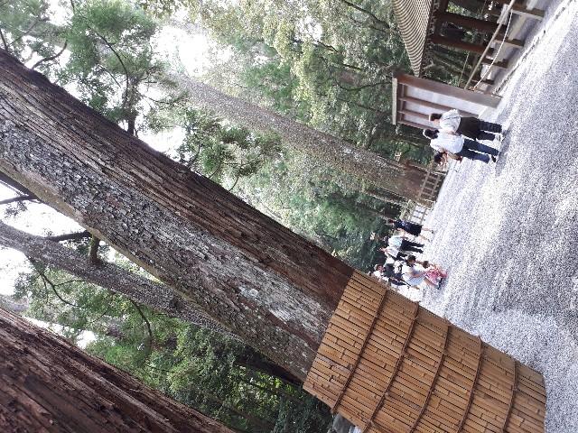 f:id:jibun-kiiro:20170917140726j:image