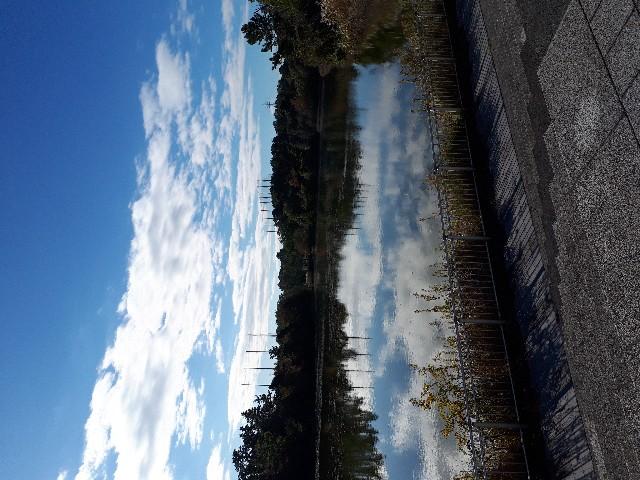f:id:jibun-kiiro:20171120064805j:image