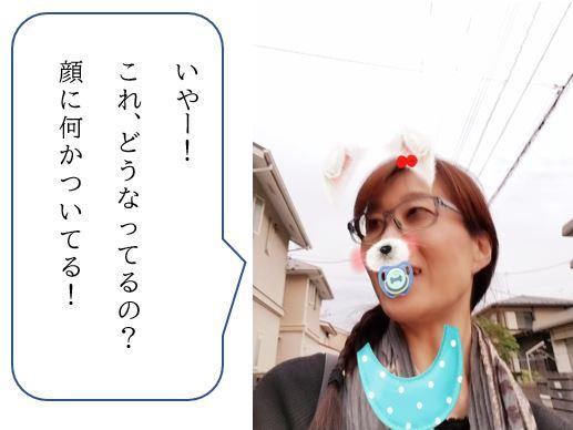f:id:jibunseiri_sdw:20200104171600j:plain
