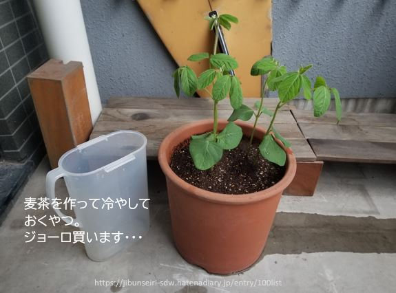 f:id:jibunseiri_sdw:20200507184706j:plain