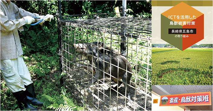 深刻な鳥獣被害問題を地域活性化の施策に【自治体(五島市)の取組事例】
