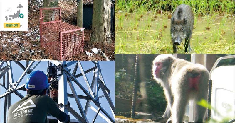 鳥獣被害対策でのICT活用は悩める現場の「救世主」になる【猪苗代市、美作市の取組事例】