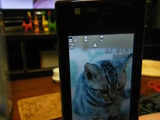 f:id:jigrat:20100809234414j:image
