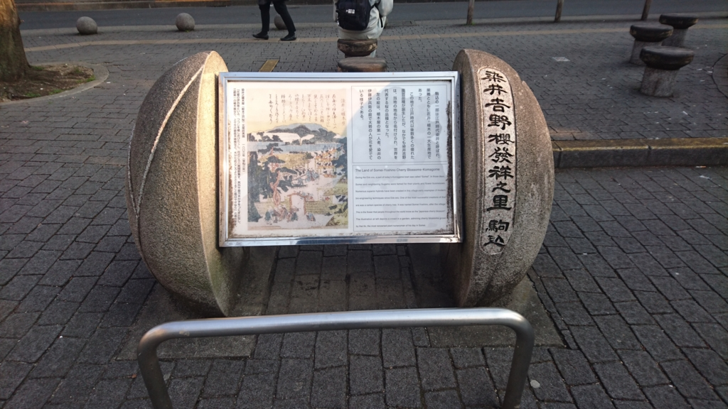 f:id:jijikokkoku:20170329211542j:plain