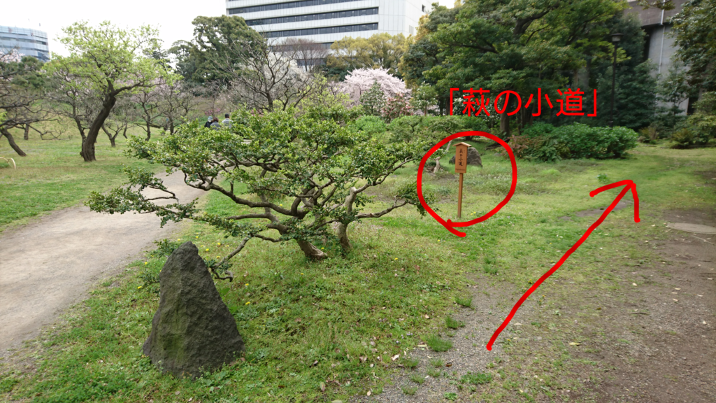 f:id:jijikokkoku:20170411070759p:plain