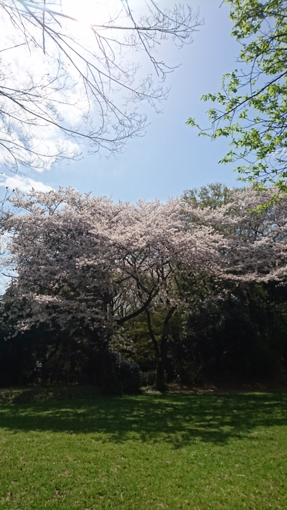 f:id:jijikokkoku:20170415162518j:plain