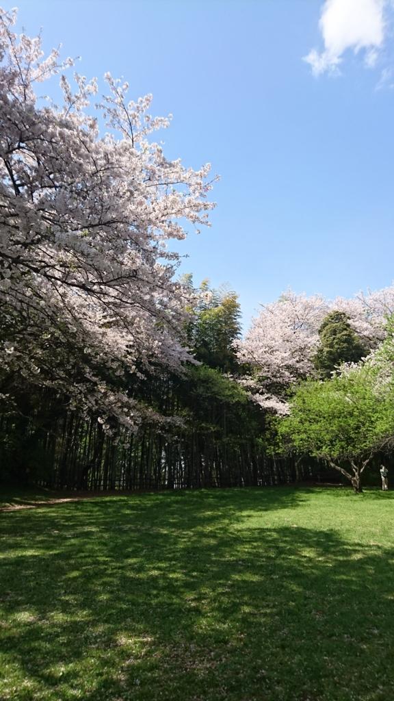 f:id:jijikokkoku:20170415163756j:plain