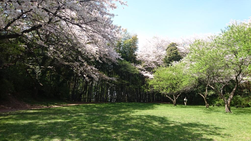 f:id:jijikokkoku:20170415164102j:plain