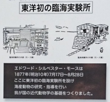 f:id:jijikokkoku:20170522195332j:plain