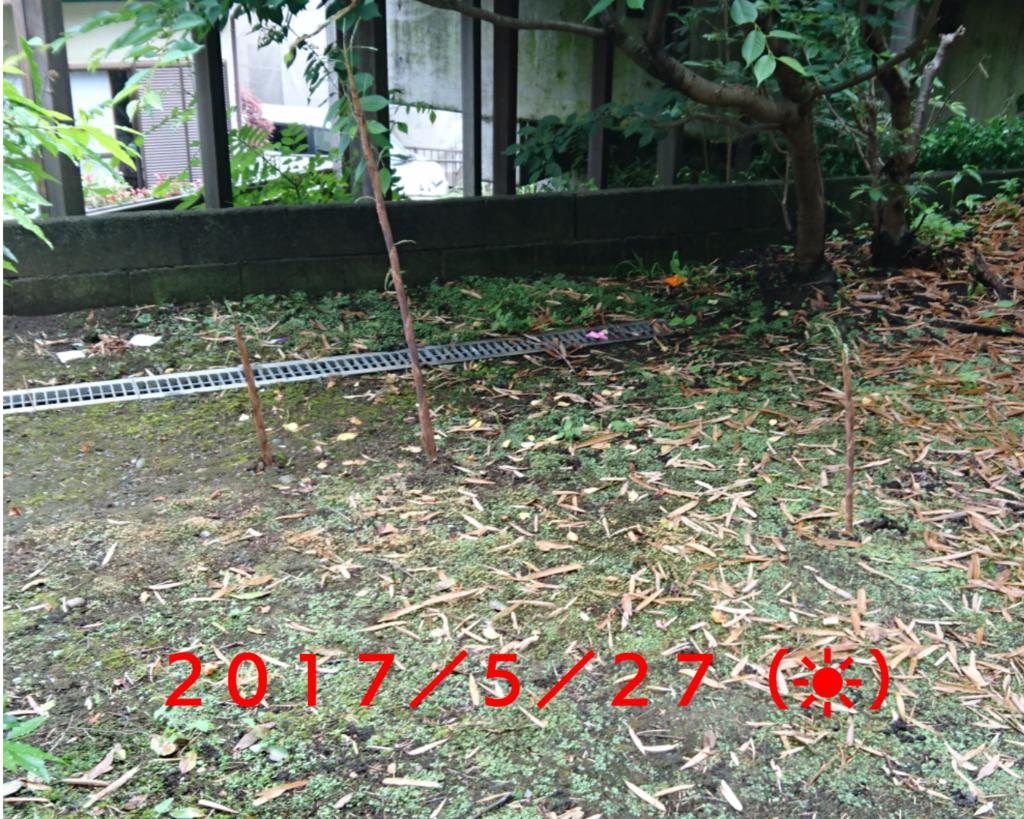 f:id:jijikokkoku:20170527122409p:plain