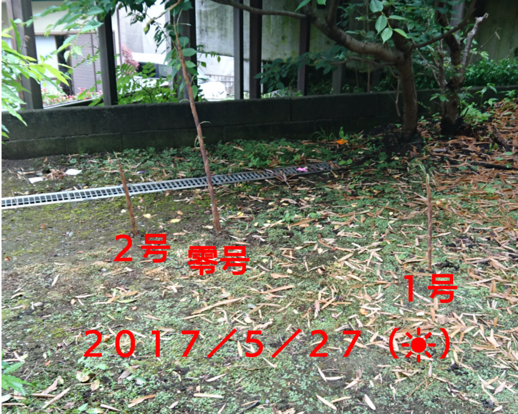 f:id:jijikokkoku:20170527123146p:plain