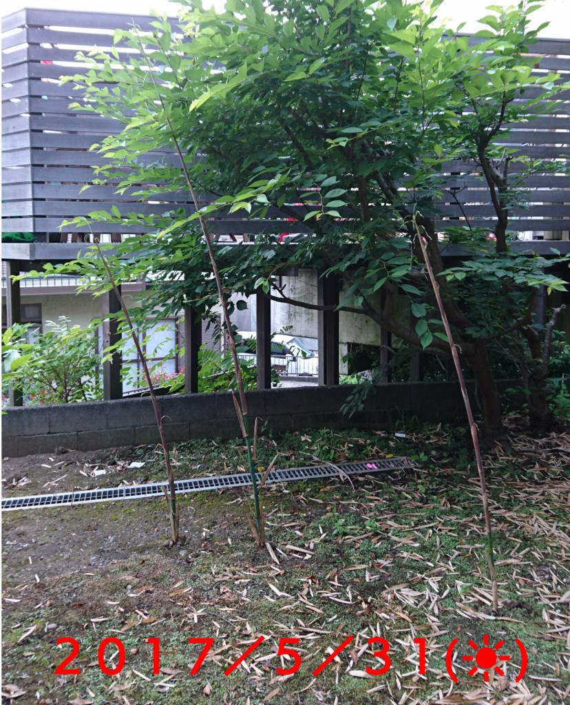 f:id:jijikokkoku:20170531062422p:plain