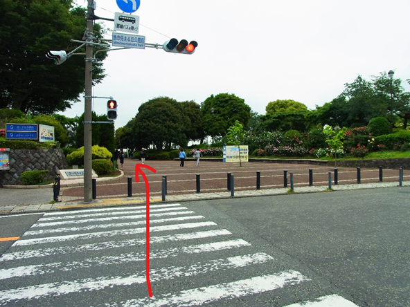 f:id:jijikokkoku:20180508214044p:plain