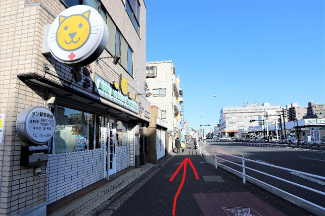f:id:jijikokkoku:20190130075751p:plain