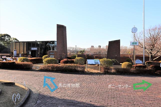 f:id:jijikokkoku:20190130080057p:plain