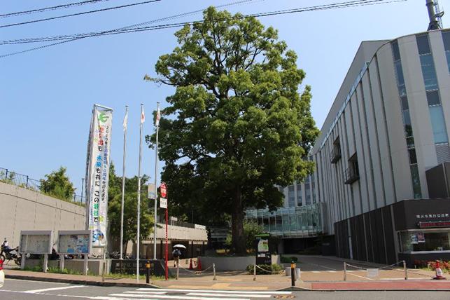f:id:jijikokkoku:20190821130739p:plain