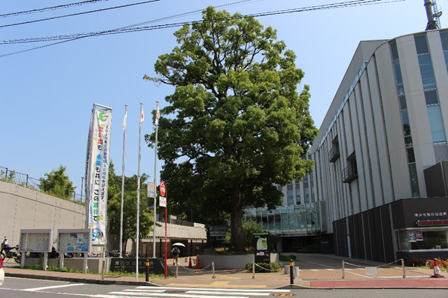 f:id:jijikokkoku:20190821130945p:plain