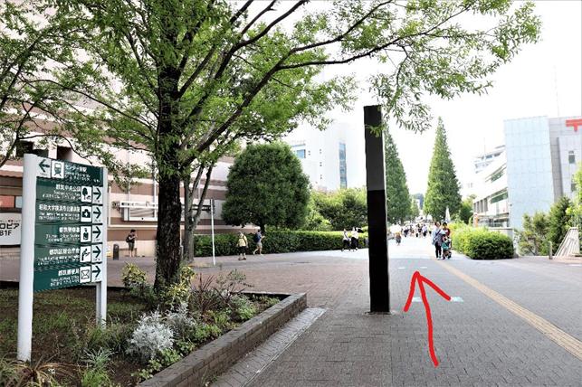 f:id:jijikokkoku:20190902134116p:plain