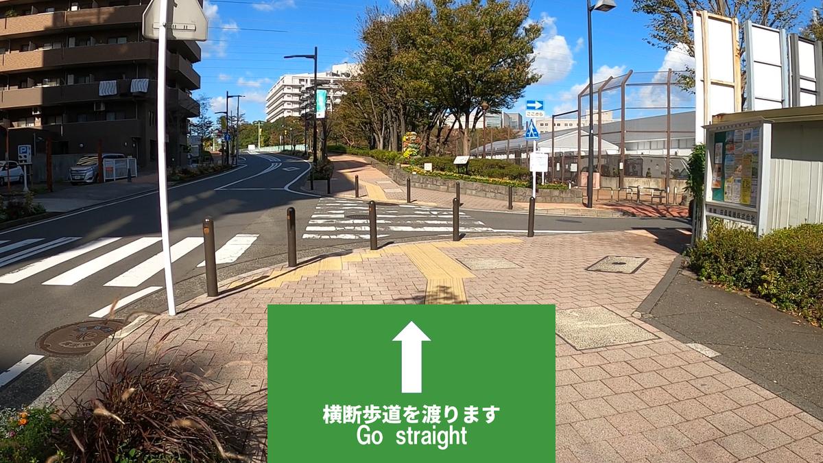f:id:jijikokkoku:20191118224157p:plain