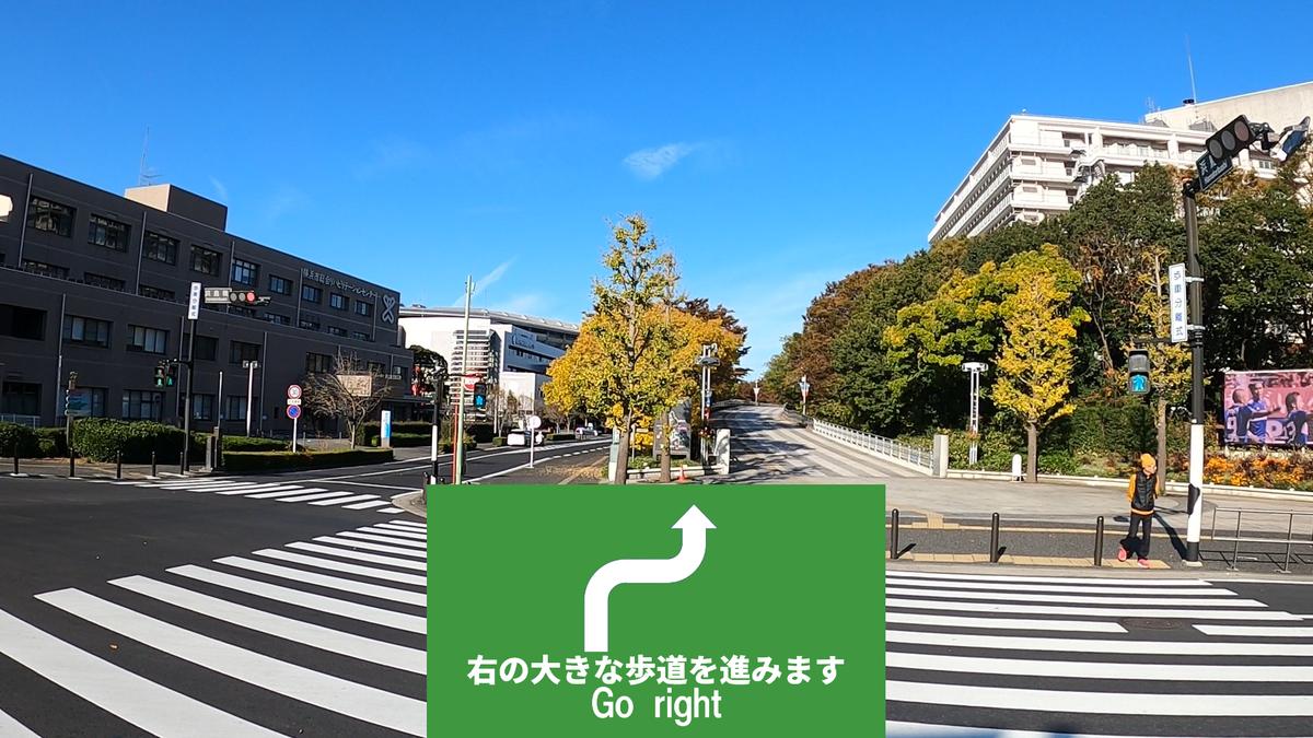 f:id:jijikokkoku:20191118224218p:plain