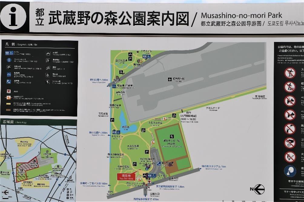 Musashinonomori Park Olympic Cycling Road Race 12