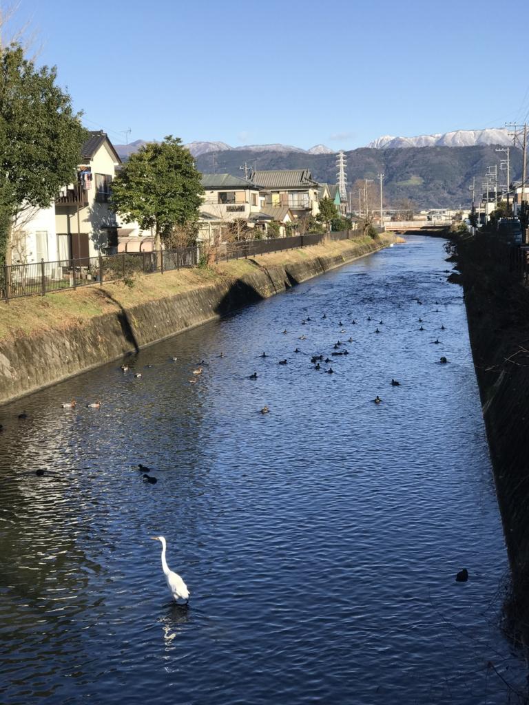 f:id:jijiro:20161228085421j:plain
