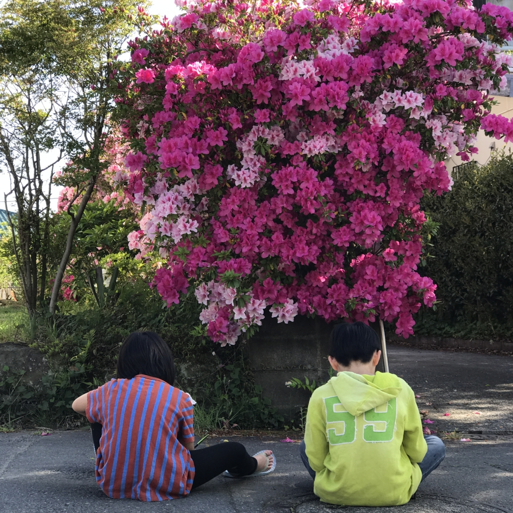 f:id:jijiro:20170505154811j:plain