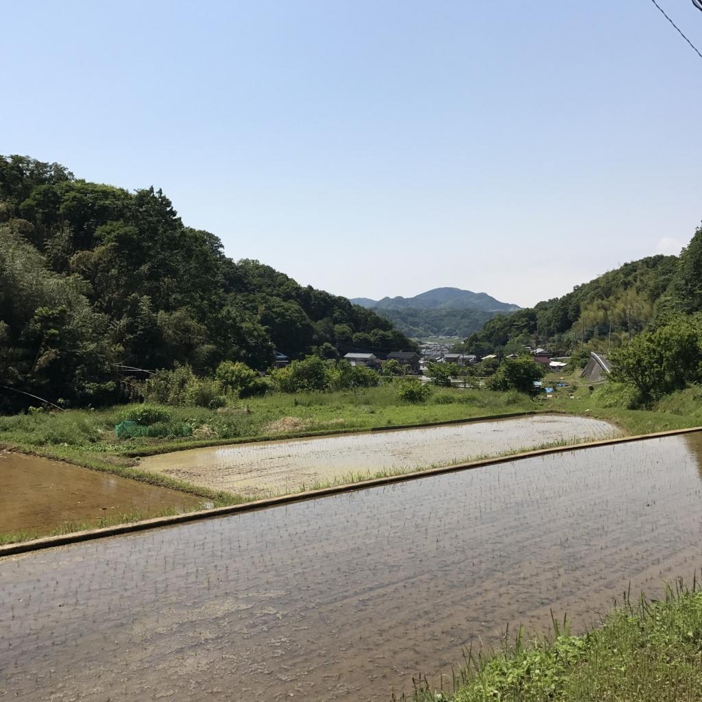 f:id:jijiro:20170522133209j:plain