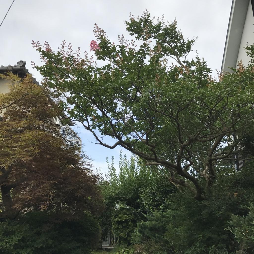 f:id:jijiro:20170725151718j:plain