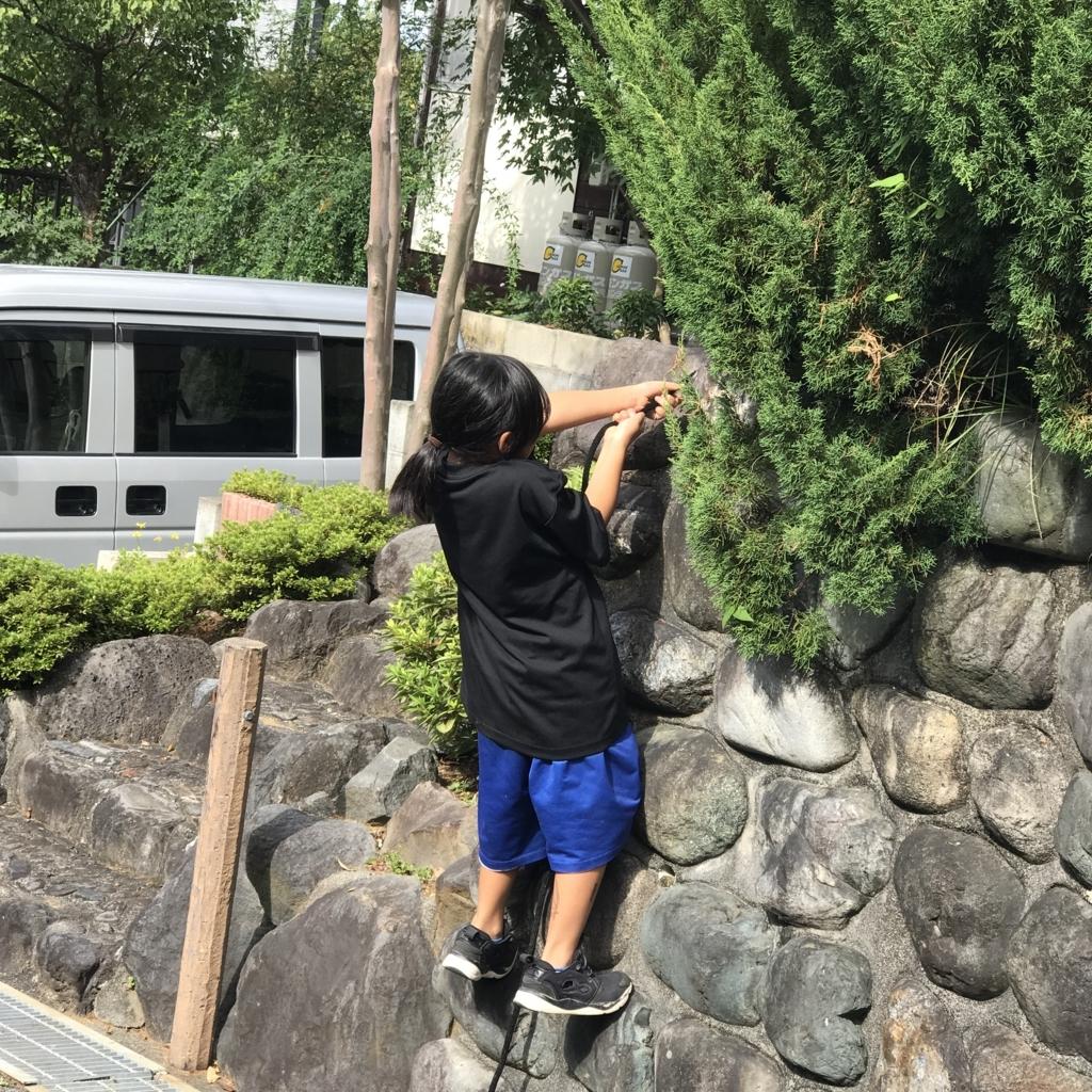 f:id:jijiro:20170930135910j:plain