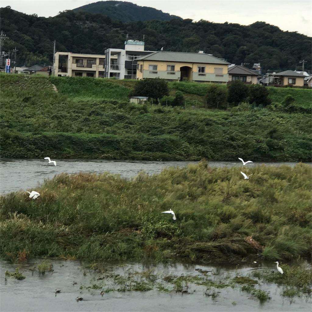 f:id:jijiro:20171018081844j:image
