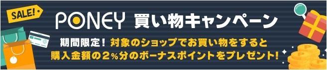 f:id:jikishi:20161107215759j:plain