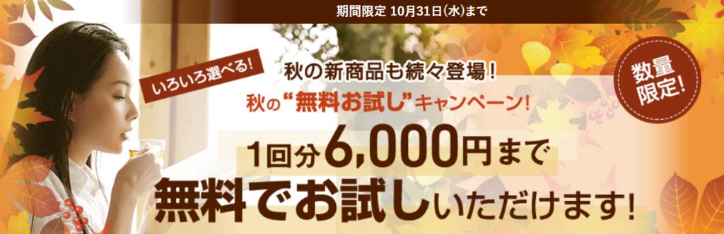f:id:jikishi:20180926221901p:plain
