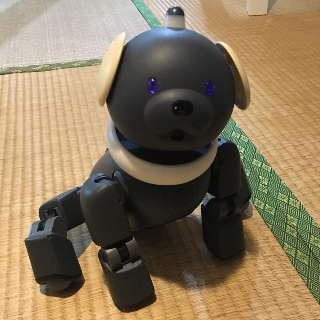 SONY,犬型ロボット,AIBO,ラッテ,マカロン,2001年,アイボ,クマ,イヌ