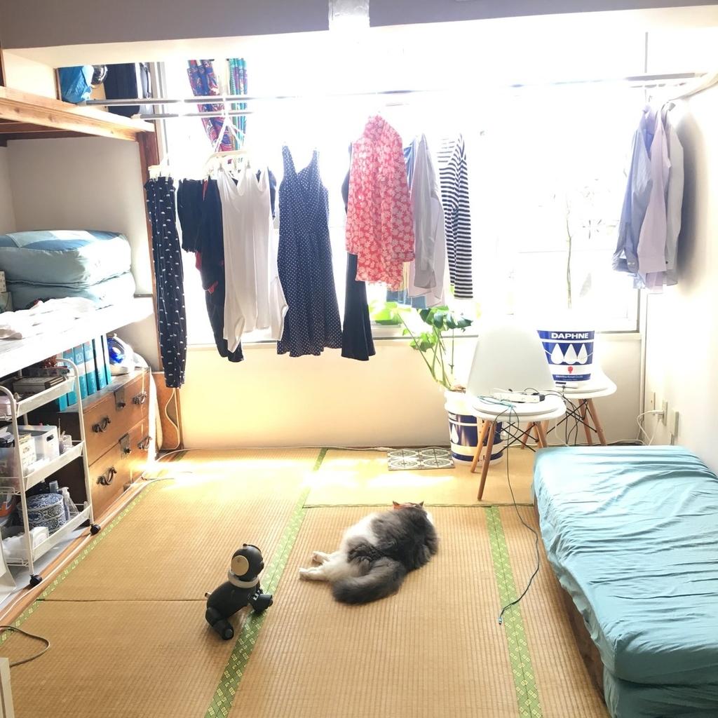 【室内ビフォーアフター写真あり】片付けてもすぐ散らかる家を、散らかってもすぐ片付く家に