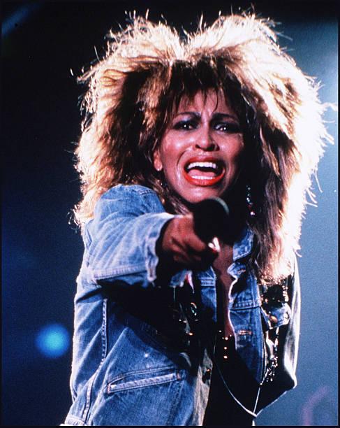 Tina Turner シルバニアファミリー 人形 ハリネズミの赤ちゃん