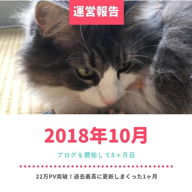 【2018年10月の運営報告】ブログ5ヶ月目は1ヶ月で73記事更新、20万PV達成
