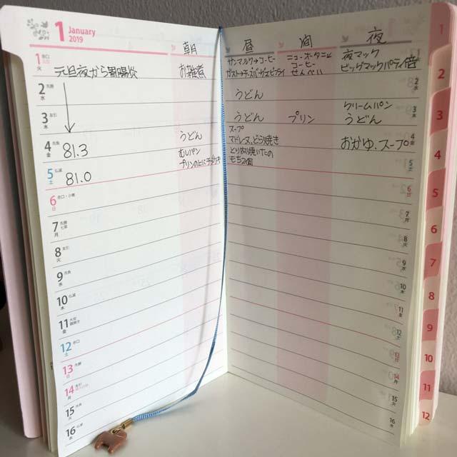 2019年のPAGEM(ペイジェム)手帳アンバサダーの私の手帳アレンジ使用法