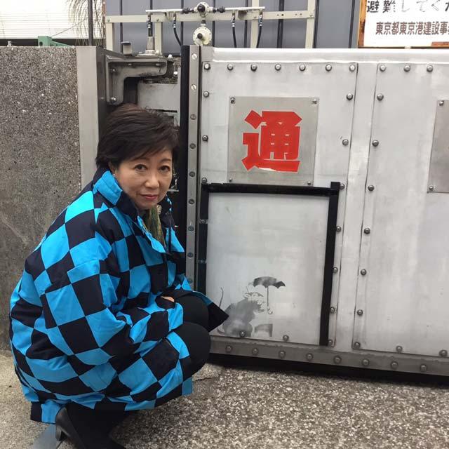 小池百合子のバンクシー作品保管で防潮扉撤去 撤去前写真