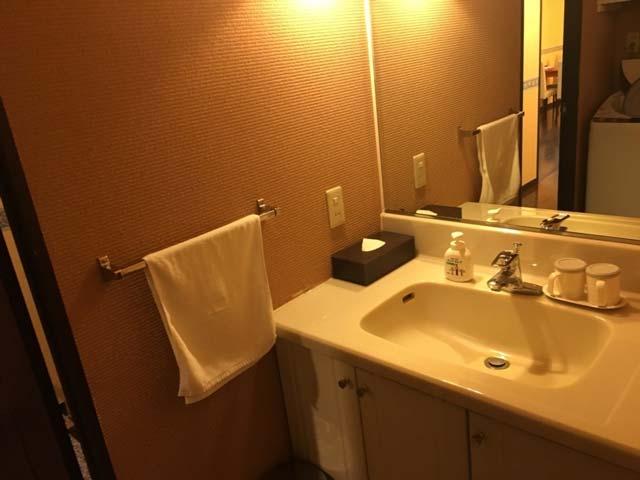 「ポイントバケーション軽井沢」の室内、トイレとサニタリーはとても綺麗