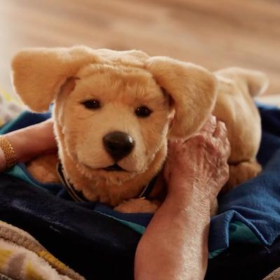 「Tombot Puppy」にみる、ペットロボットは歩く必要あるのか問題