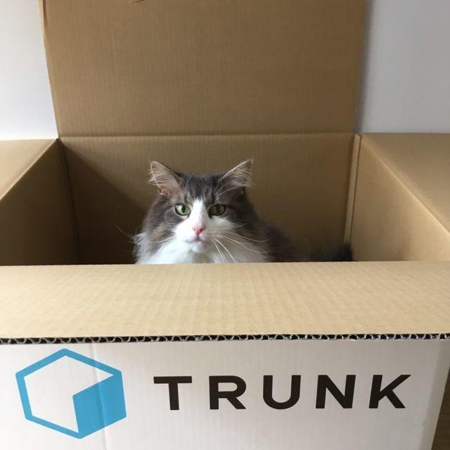 Think inc.が運営する月間80万PVのライフハックマガジン「私の節約」にコラム「宅配型収納サービス「TRUNK(トランク)」で収納スペースを節約しよう」を寄稿させていただきました