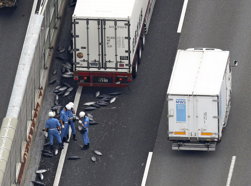 阪和道など高速道路に冷凍カツオ5トン散乱した時の対処法を考えてみた